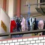 ベランダに隠さず大胆に干されてる女性下着を激写した洗濯物エロ画像